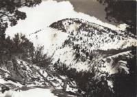 ku-bee:1709-65