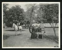 Man on a horse, three women and a dog