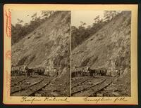 Pacific Railroad / Conception Fill:  donkey and cart on tracks