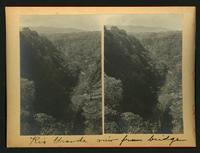 Rio Grande / view from bridge