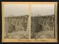 Ciruelas Bridge: view of trellis
