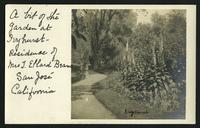 Postcard: Garden at Ivyhurst, the residence of Mrs. J. Ellard Beans, San Jose, CA
