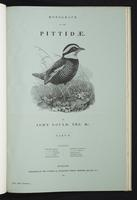 Monograph of the Pittidae, 1:front