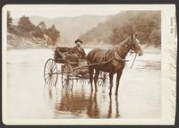 Horse and Carriage in River - Probably Colorado