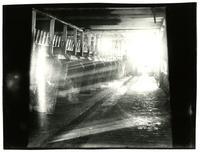 Blue Grass Dairy, Interior