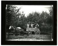 Spraying Fruit Trees (Possibly Walnut Ave. Fruit Farm)
