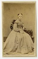 Portrait of young girl with a large gingham dress
