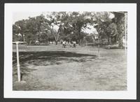 Cordley School Playground