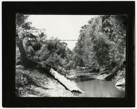 Woman on Suspension Bridge Over Wakarusa River