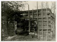Ruins of Jacob Branson Cabin