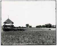 Bismark Grove- Field, Track, and Barn