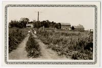 C.J. Buckingham Farm