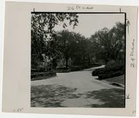 Residential Street, Lawrence