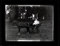 Barnes children in cart