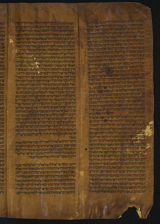 Scroll containing text of Torah from Leviticus viii, 28 through the end of Deuteronomy